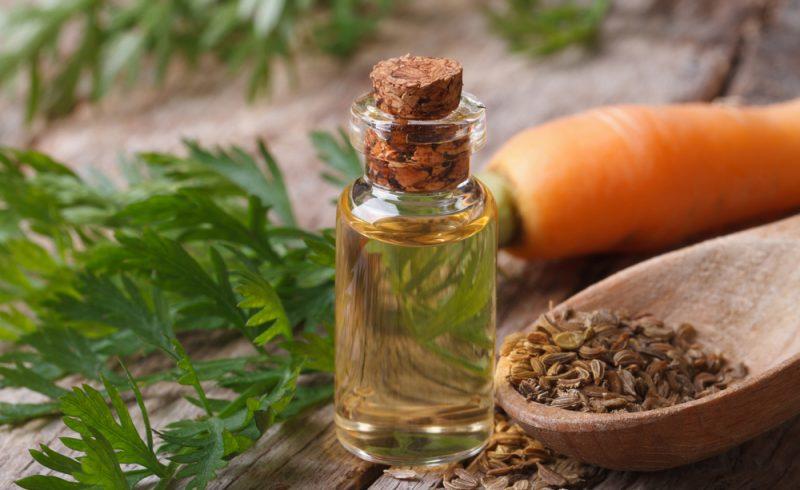 fiole d'huile essentielle de carotte sur une table avec des carottes et des graines de carottes